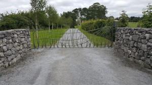 john-hogan-hand-forged-ironwork-georgian-art-nouveau-gates-blacksmith-mayo-ireland-gates-2-7